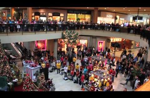 Christmas Flash Mob Southbay Galleria 2020 Christmas Flash Mob by Journey of Faith at South Bay Galleria