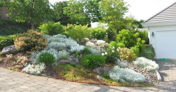 Jardin de rocaille avec des arbustes et arbres decos de for Jardin avec arbustes