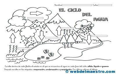 Ciclo Del Agua Para Ninos Web Del Maestro Ciclo Del Agua Web Del Maestro Ciclo Hidrologico