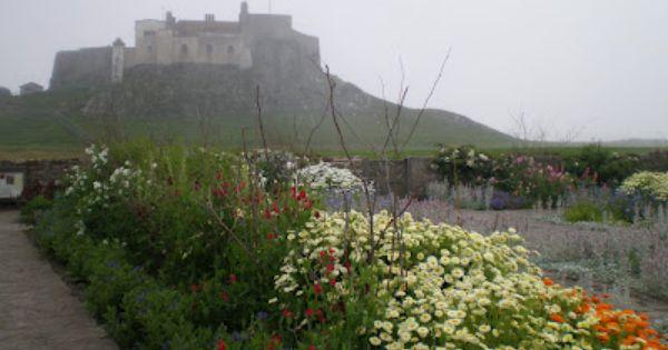 The gertrude jekyll garden gardens and flowers for Gertrude jekyll garden designs