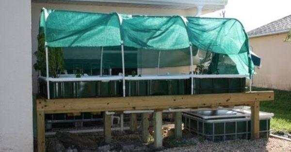 Ibc Aquaponics System System Utilizing Three 1000 Liter 275 Gallon Ibc Totes This Is A Chift Pist System Which Mean Aquaponics Aquaponics System Hydroponics