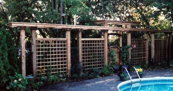 Screen by pool to help create privacy a girl can dream for Pool privacy screen