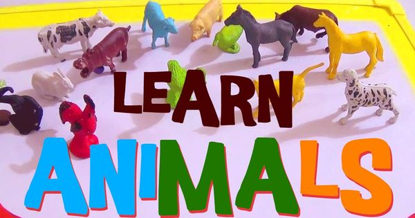 Learning Animals For Toddlers-Learn About Animals-Animal Sounds ...