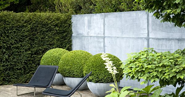 potted boxwood and lounge chairs. very modern.