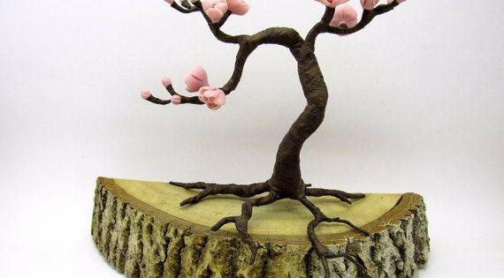 Beautiful Cherry Blossom Bonsai Flowering Bonsai Tree Cherry Blossom Bonsai Tree Bonsai Tree Care