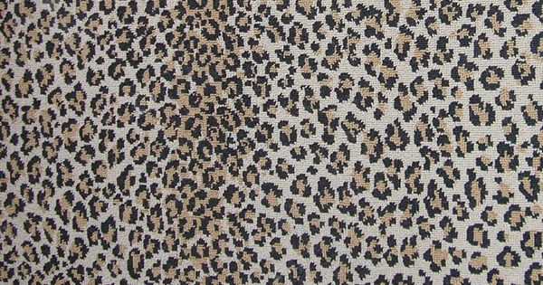 Leopard Carpet Wall To Wall : Leopard carpet wall to bing images
