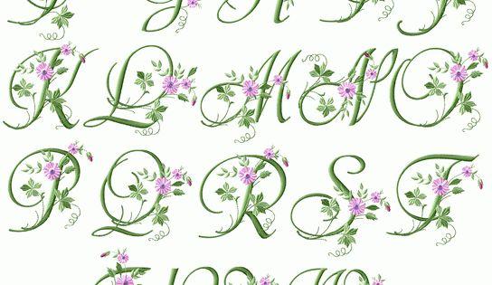 Elegant floral initials machine embroidery font quot x