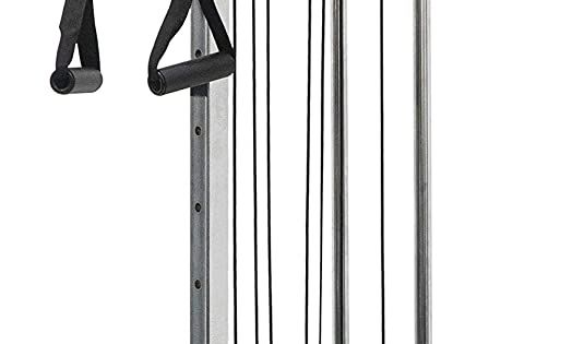 Amazon Com Valor Fitness Bd 62 Wall Mount Cable Station With Adjustable Dual Pulley System And Strap H In 2020 Best Home Gym Equipment Home Gym Equipment At Home Gym