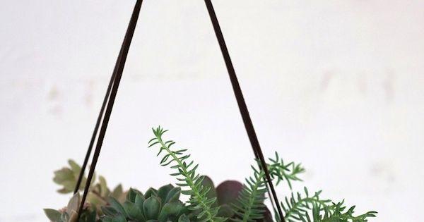 So pretty succulents garden planter