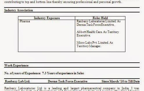 Executive Cv Samples Sample Template Example OfExcellentCurriculum   Sample  Sales Budget