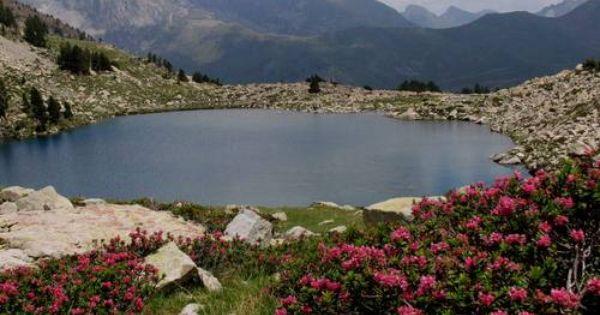 Ibón Grande De Batisielles Con Rododendros En Primer Plano Valle De Estós Localización Pirineos Huesca Aragón E España Lugares De España Tiempo En España
