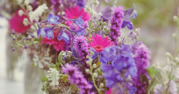 Wildflowers in jewel tones, mason jars filled with queen anne's lace, liatris,