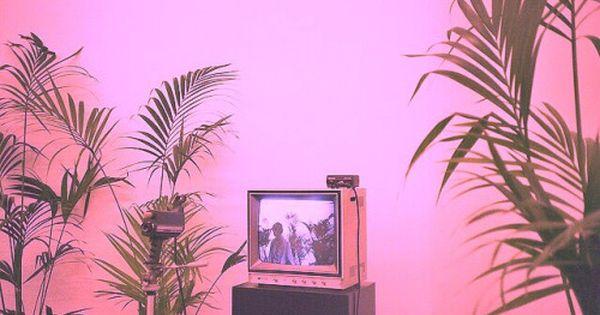 Imagen De Tv Plants And Green Pink Aesthetic Aesthetic Backgrounds Plant Aesthetic