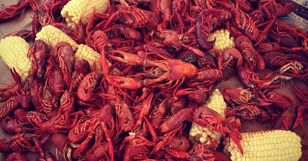 memorial day crawfish houston