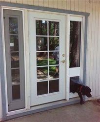 sb standard patio pet door insert pet