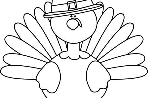 Black and White Turkey Pilgrim