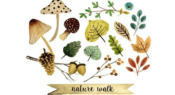 Nature walk clipart by Rosabebe