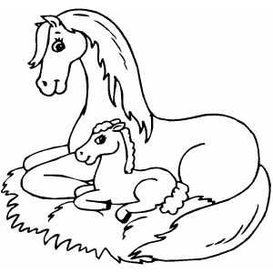 Horse Sitting With Foal Printable Coloring Page Free To Download