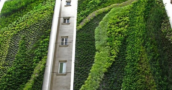 "Vertical garden by Patrick Blanc - the original master of the ""green"