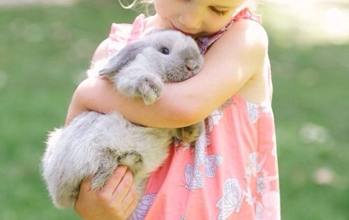 While bunnies are not normally good pets for children