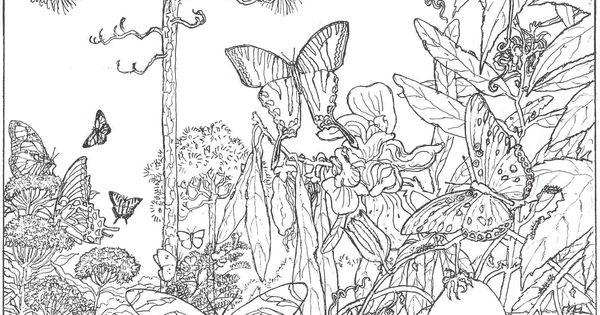 hard Forest Scene Coloring Pages