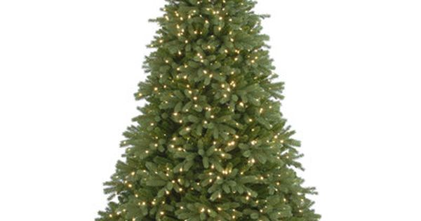 Jersey Fraser 7 6 Green Fir Artificial Christmas Tree With 1250 Multi Color Lights Pre Lit Christmas Tree Fraser Fir Christmas Tree Fir Christmas Tree