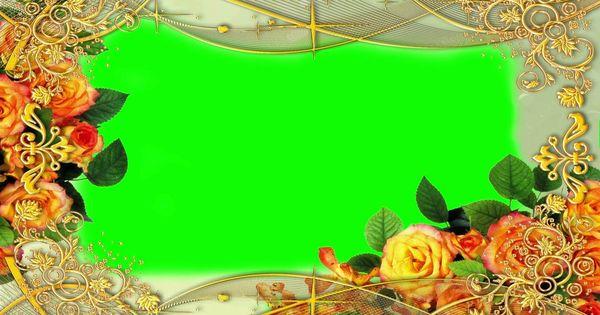 Wedding Rose Flower Green Screen Video Greenscreen Green Screen Footage Animation Background