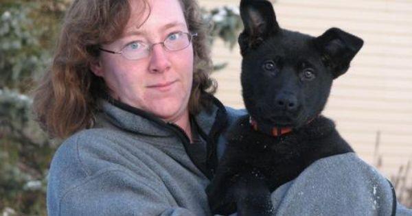 Chris Wild Of Wildhaus Kennels Working German Shepherd Breeder In Michigan German Shepherd Breeders German Best Dogs