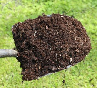 How Compost Turns Yard Waste Into Black Gold Organic Gardening Soil Garden Soil Organic Gardening