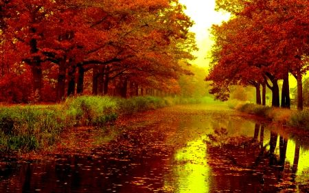 Image Result For Non Copyrighted Landscape Images Autumn Rain Rain Wallpapers Autumn Season Images