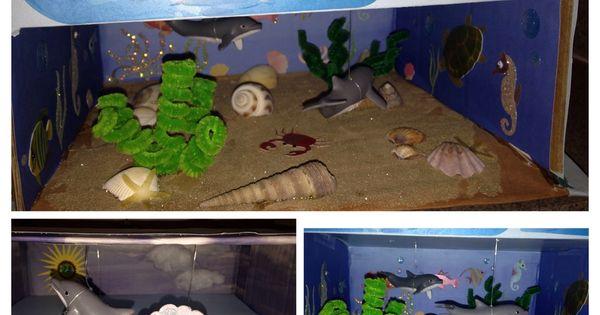 3d dolphin habitat project my diy projects pinterest