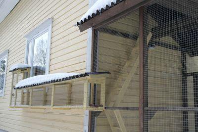Kissan Aitaus Ulkoiluaitaus Siperiankissa Kissan Ulkoilu Kissan Ulkoiluaitaus Kissan Ulkohakki Catio Outdoor Pet Enclosure Cat Playground Outdoor