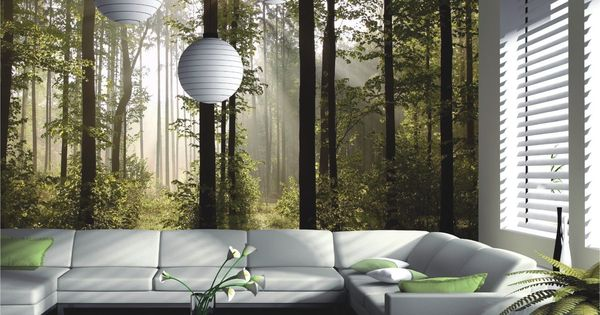 fototapete tapete natur wald b ume lichtspiel foto 360 cm x 254 cm baumarkt deco. Black Bedroom Furniture Sets. Home Design Ideas