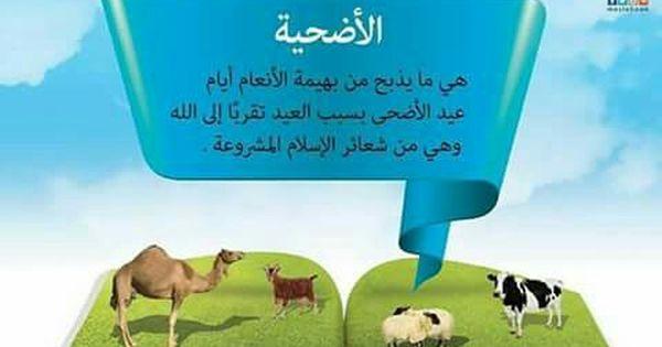 Pin By زهرة الياسمين On الحج عيد الأضحى عشر ذي الحجة