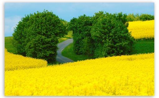 Download Beautiful Spring Landscape Hd Wallpaper Spring