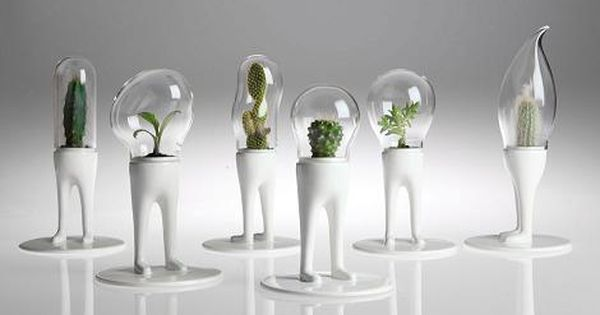 table terrariums | Unique gifts and table decoration ideas, cacti, small house