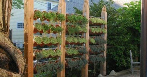 sichtschutz im garten beleuchten pflanzen landschaft garten pinterest sichtschutz. Black Bedroom Furniture Sets. Home Design Ideas