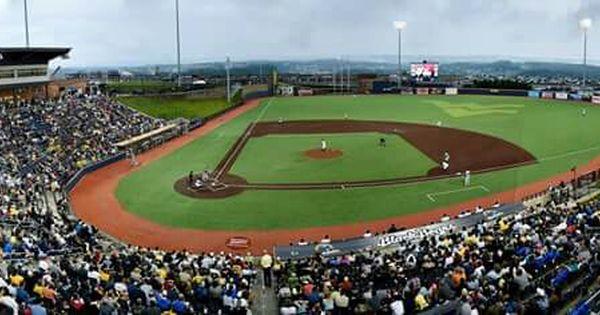 West Virginia Black Bears West Viginia University Baseball West Virginia Virginia Minor League Baseball