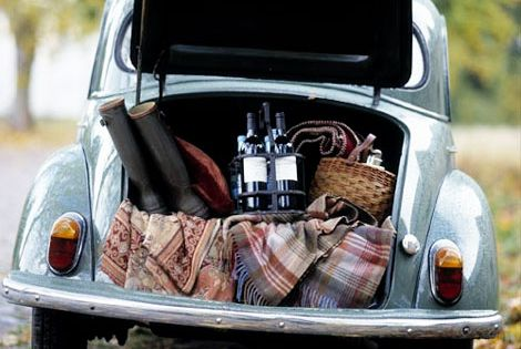 great day for a Picnic in the woods in your VW bug.