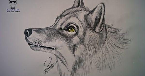 كيفية رسم بورتريه لرجل مع لحية خفيفة بالرصاص How To Draw Portrait Youtube Animal Drawings Animal Art Pencil Art Drawings
