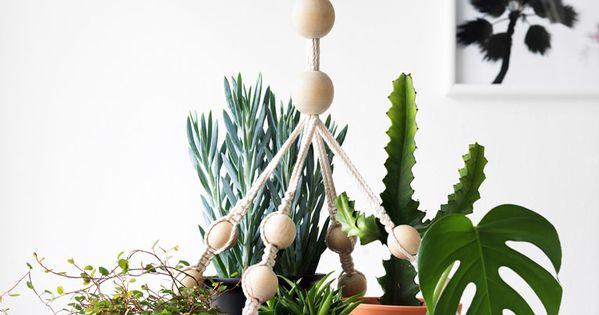 plateau suspendu avec plantes ikea plantes pinterest. Black Bedroom Furniture Sets. Home Design Ideas