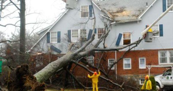 Boca Raton Public Insurance Adjuster Call Now Wind Damage Wind