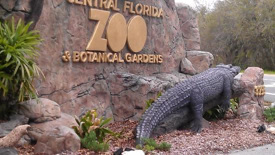 Central Florida Zoo Botanical Gardens In Sanford Fl Sanford Florida A Lot To Like