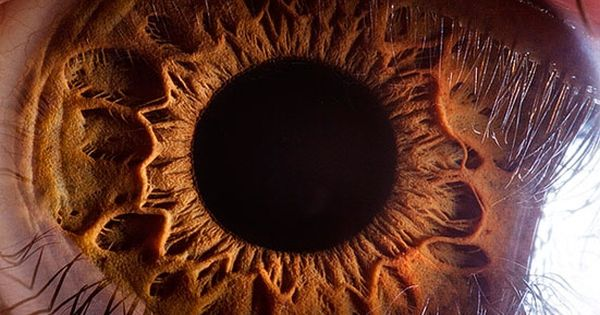 Amazing macro photography of the human eye by Suren Manvelyan