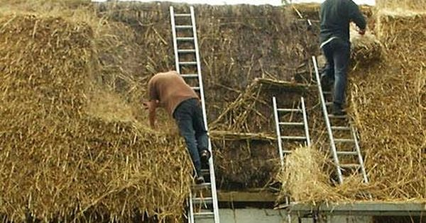 How To Build A Thatched Roof Hunker Thatched Roof Green Roof Natural Building