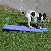 Clean Run Max 200 Tippy Plank Dog Agility Course Diy Dog Agility Puppy Socialization