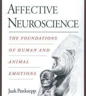 Affective Neuroscience The Foundations Of Human And Animal Emotions Edition 1 Paperback In 2021 Neuroscience Emotions Got Books
