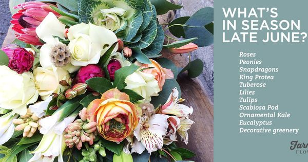 Seasonal Flowers In June - Google Search