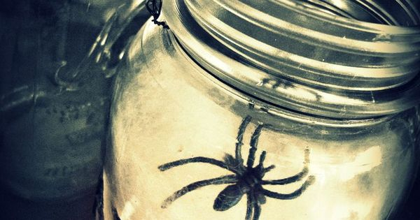 Spider web lantern Halloween DIY