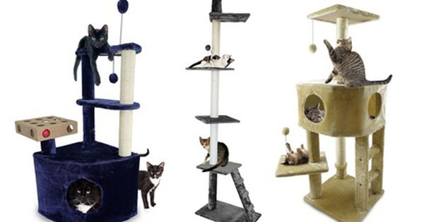 Cat Furniture Trees And Playgrounds Cat Furniture Cat Scratching Post Cat Playground Outdoor
